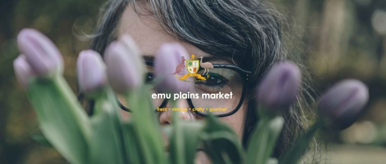 Emuplains Market